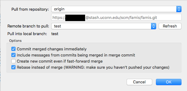 Technical Team - Getting Started - Common Issues with Git